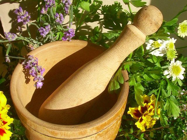 Народная медицина широко использует в лечении артрозов сабельник, его настойку принимают внутрь и применяют для растираний