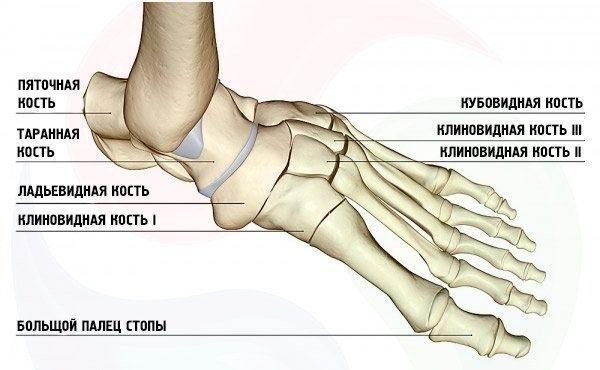 При артрозе начинают деформироваться пальцы стопы, а при ходьбе человек чувствует боль