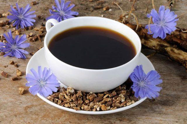 Цикорий при подагре имеет такие же свойства как и кофе