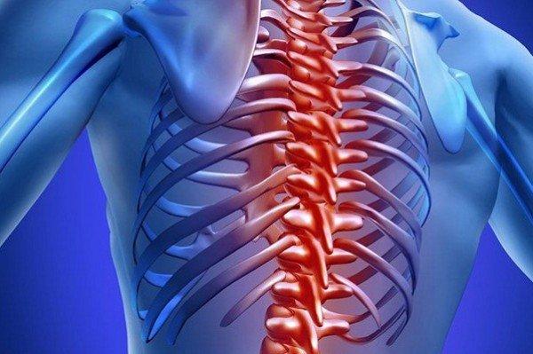 Нередко больной ощущает онемение грудного отдела, нарушается функционирование внутренних органов