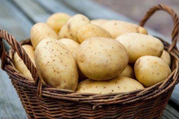 При подагре полезно есть картофель в любом виде